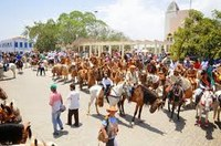 TRÂMITA NO PODER LEGISLATIVO PROJETO DE LEI QUE TORNA A FESTA DOS VAQUEIROS PATRIMÔNIO IMATERIAL HISTÓRICO E CULTURAL DE ITABERABA-BAHIA.